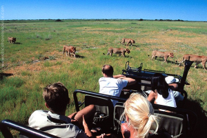 best-country-safari-1