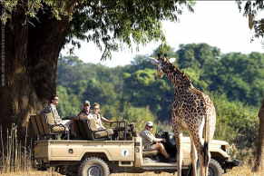best-country-safari-5