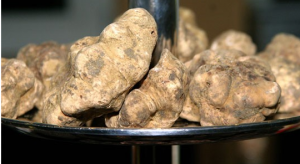 fooddelicacies_whitetruffles